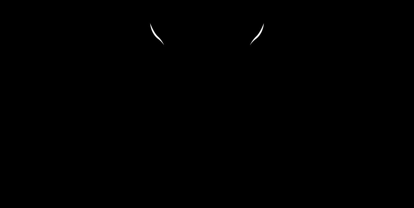 Vieira de Sousa Logo